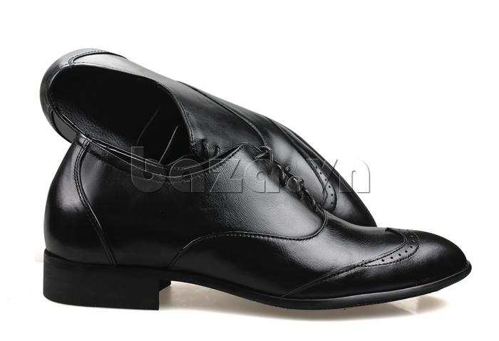 Giày nam tăng chiều cao Max Dovin AG001 mặt đục lỗ giải pháp mới cho chiều cao của bạn