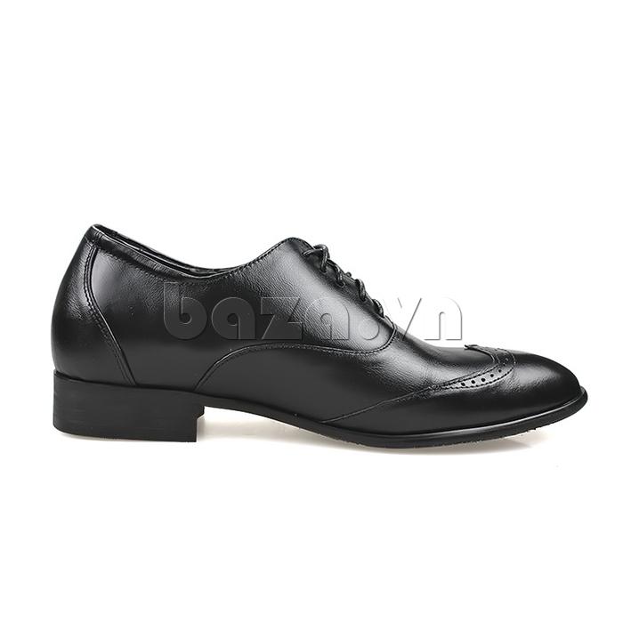 Giày nam tăng chiều cao Max Dovin AG001 mặt đục lỗ phong cách