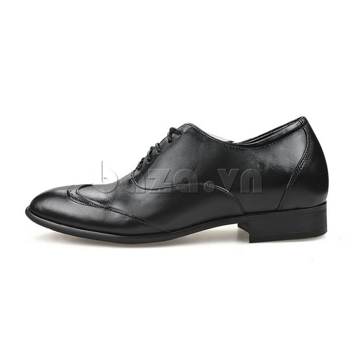 Giày nam tăng chiều cao Max Dovin AG001 mặt đục lỗ