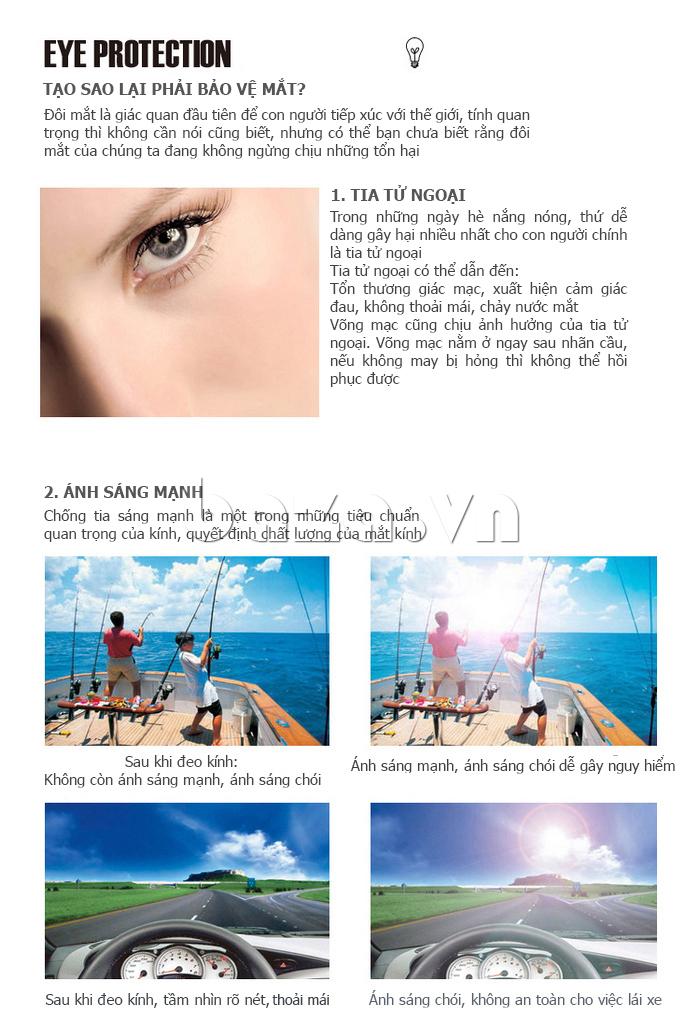 Kính nữ phân cực MSMK 3928 - kính mắt phân cực