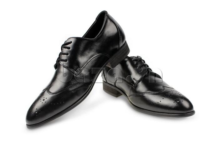 Giày nam tăng chiều cao Max Dovin - giầy da sành điệu