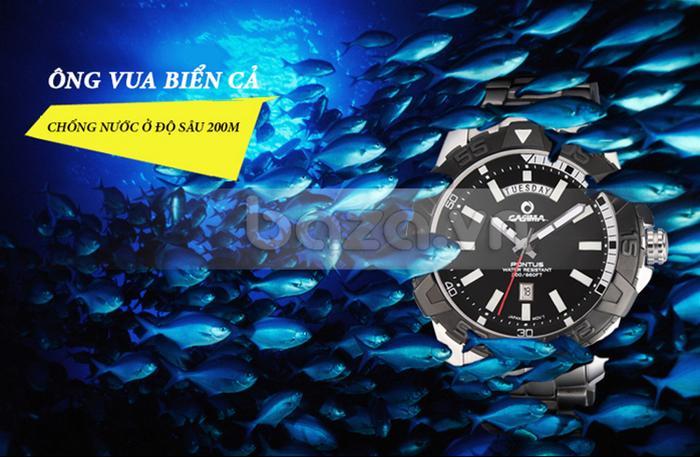 Đồng hồ nam Casima PT-8901 là vua dưới đáy đại dương